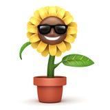 Cartoon sun flower Stock Photo