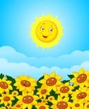 Cartoon Sun flower field Stock Photos