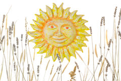 Cartoon sun with spike and lavender Royalty Free Stock Photography