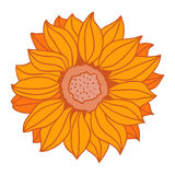 Cartoon sunflower. Icons Vector. Flat vector illustration Stock Photography