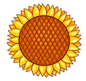 Cartoon sunflower Stock Photography