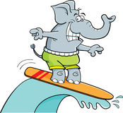 Cartoon surfing elephant Stock Photography