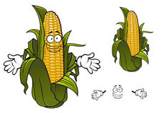 Cartoon sweet corn or maize vegetable. Sweet corn or maize vegetable cartoon character with rows of yellow kernels and papery thin green husks. For agriculture Royalty Free Stock Images