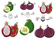 Cartoon sweet exotic fig, feijoa and pitaya fruits. Happy exotic sweet fig, ripe feijoa and juicy pitaya fruits cartoon characters. May be use as agriculture Stock Image