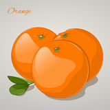Cartoon sweet orange on grey background. Vector Illustration. Fruits and vegetables collection Royalty Free Stock Photo