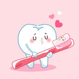 Cartoon teeth and toothbrush. Cute cartoon teeth and toothbrush with happy valentine day royalty free illustration