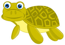Cartoon of the terrapin on white background Royalty Free Stock Images