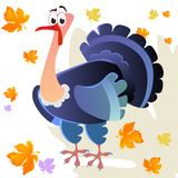 Cartoon thanksgiving turkey character, autumn holiday bird vector illustration on white background with falling leaves. Cartoon thanksgiving turkey character in Stock Photography