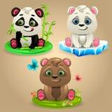 Cartoon three bears Royalty Free Stock Images