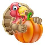 Cartoon Thumbs Up Turkey and Pumpkin Royalty Free Stock Photo