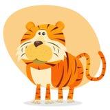 Cartoon Tiger. Illustration of a cartoon bengal tiger animal character Stock Photo