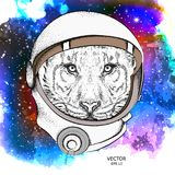 A cartoon tiger in an astronaut`s space suit. Character in space. Vector illustration Stock Illustration