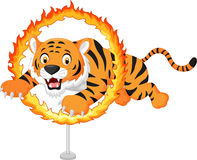 Cartoon tiger jumps through ring of fire vector illustration