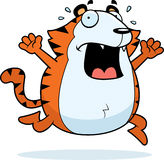 Cartoon Tiger Panic Stock Images