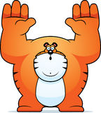 Cartoon Tiger Surrender Royalty Free Stock Images