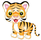 Cartoon Tiger Vector Illustration Royalty Free Stock Images