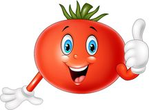 Cartoon tomato giving thumbs up Stock Images