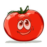 Cartoon tomato Stock Photography