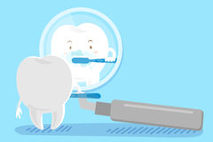 Cartoon tooth brushing. Cute cartoon tooth brushing in the mirror vector illustration
