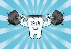Cartoon Tooth Character Lifting Weights Stock Photo