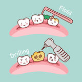 Cartoon tooth floss and drilling. Cute cartoon tooth floss and drilling, great for health dental care concept Royalty Free Stock Image