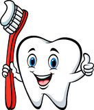 Cartoon tooth holding a tooth brush giving thumb up. Illustration of Cartoon tooth holding a tooth brush giving thumb up stock illustration