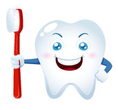Cartoon tooth holding a toothbrush Stock Images