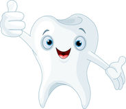 Cartoon tooth. Illustration of happy smiling dental tooth Royalty Free Stock Images