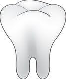 Cartoon tooth Stock Photography