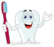 Cartoon tooth with toothbrush Royalty Free Stock Image