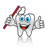 Cartoon tooth with toothbrush. And happy face Stock Photos