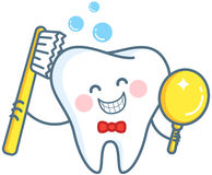 Cartoon Tooth With Toothpaste And Mirror stock illustration