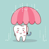 Cartoon tooth with umbrella Royalty Free Stock Photo