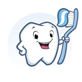 Cartoon Tooth. Vector illustration of cute cartoon tooth holding toothbrush Stock Photo