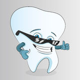 Cartoon tooth. Vector. Cartoon tooth  on white background Royalty Free Stock Images