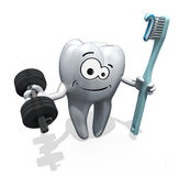 Cartoon tooth weight training Stock Photos