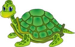 Cartoon tortoise Stock Photo
