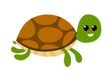Cartoon Tortoise Stock Photos