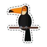 Cartoon toucan bird exotic fauna Royalty Free Stock Images