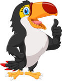 Cartoon toucan gives thumb up Stock Photos