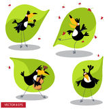 Cartoon toucan. Gives thumb up. vector illustration Stock Photography