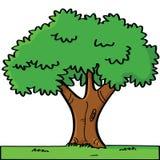 Cartoon tree. Cartoon illustration of a tree in summer Stock Photo