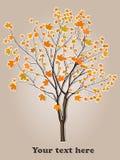 Cartoon Tree Royalty Free Stock Photography