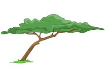 Cartoon Tree Stock Photos