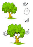 Cartoon tree with attention sign. Cartoon smiling green tree character on a sunny glade with sappy grass showing attention gesture. For ecology or nature design Royalty Free Stock Photos