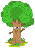 Cartoon tree character Stock Photography