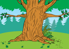 Cartoon tree in the forest Stock Photography