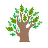 Cartoon Tree Green Oak. Vector Royalty Free Stock Images