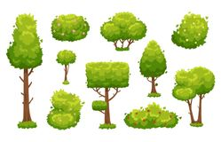Cartoon trees and bushes. Green plants with flowers for vegetation landscape. Nature forest tree and hedge bush vector. Cartoon trees and bushes. Green plants royalty free illustration