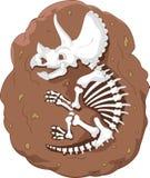 Cartoon triceratops fossil. Illustration of Cartoon triceratops fossil Royalty Free Stock Photos